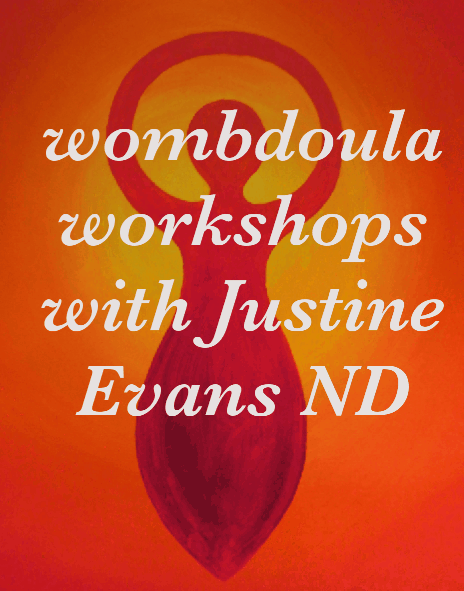 wombdoula workshops